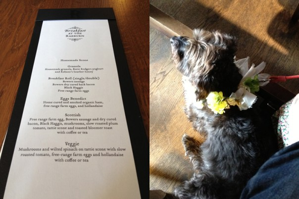 The priceless breakfast menu and Eric in his wedding finery