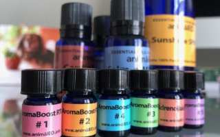 photo of AnimalEO essential oils for dogs