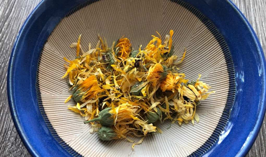 Dried calendula flowers and stems in hand crafted blue Japanese mortar