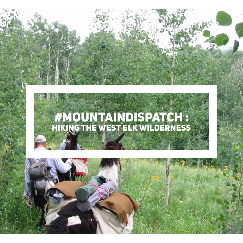 mountaindispatch-west-elk