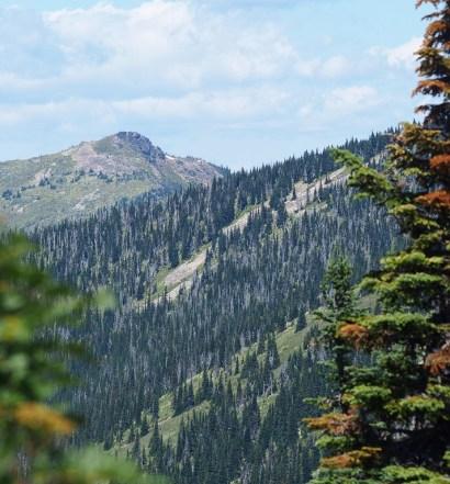 Northern Idaho Public Lands