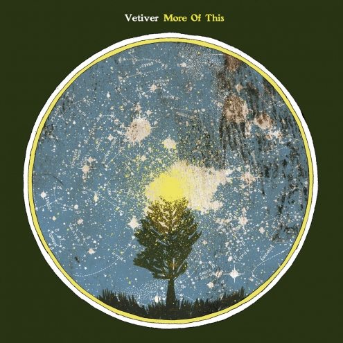 Vetiver More of This 12-inch cover