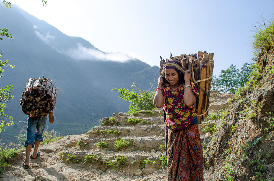 A villager carrying firewood up the mountain in a doko strapped to her head.