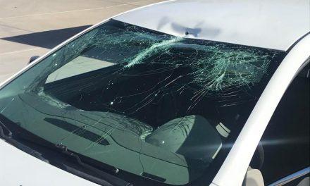 DUI Suspected In Parkway Fender Bender