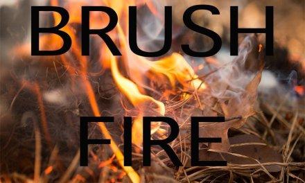 Kingman Brush Fire Under Investigation