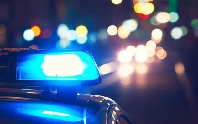 Police Van Strikes, Kills Burro On Highway 68