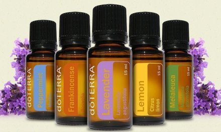 Essential Oils: A Holistic Approach To Health & Wellness