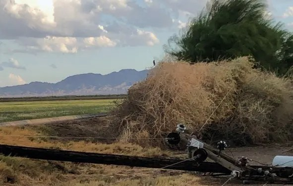 Outages affect members in Fort Mohave  Bullhead City, and Mohave Valley