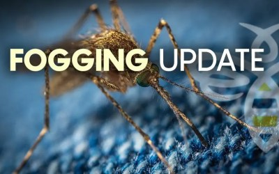 FOGGING UPDATE: SURVEILLANCE LEADS TO  ADULT MOSQUITO CONTROL IN  MOHAVE VALLEY
