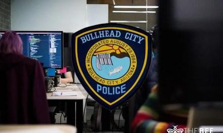 Bullhead City Dispatch Stats for 2019