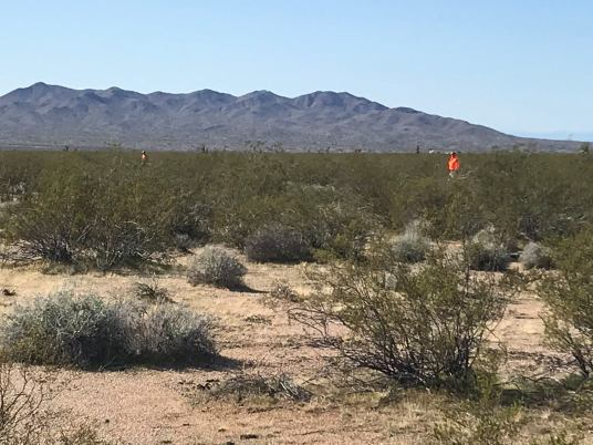 2-25-20 MCSO Search and Rescue 2