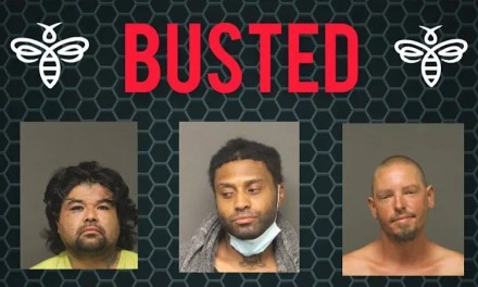 Busted by Mohave County Sheriff's Office