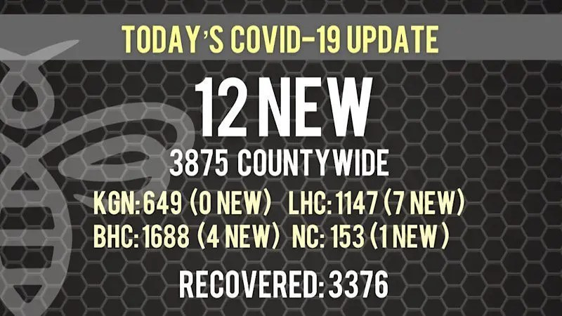 12 New COVID-19 Cases Today