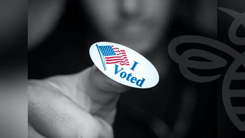 Vote in Person Early