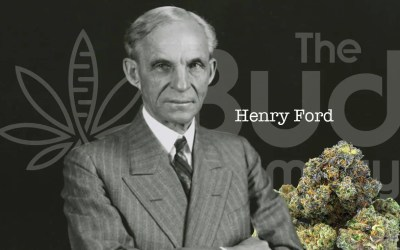 Henry Ford and Cannabis?