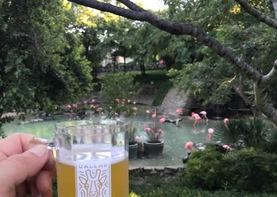 Your new favorite Beer Fest: Brew at The Zoo