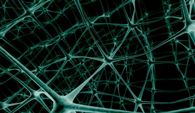 neuron web