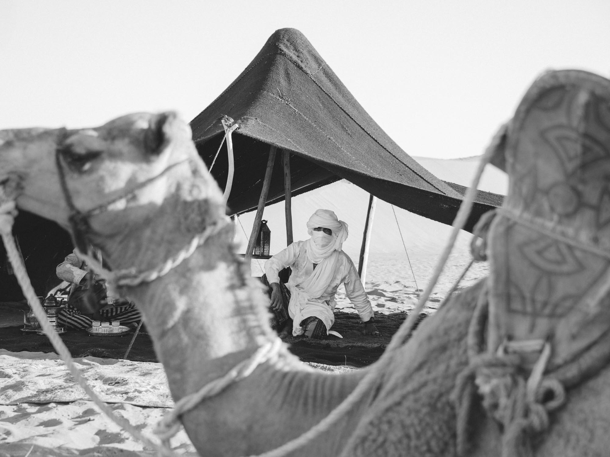 Beldi Tour Guides Resting in the Shade With Camel at Nubia Desert Camp