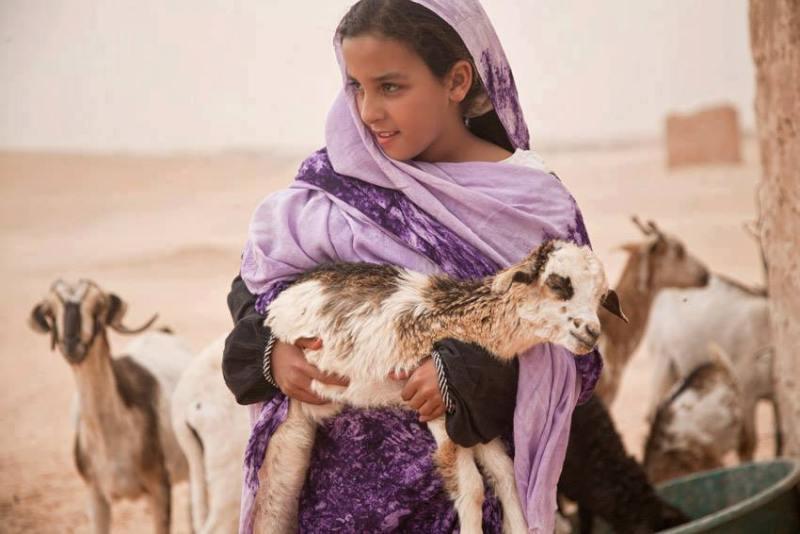 Berber desert girl with goats