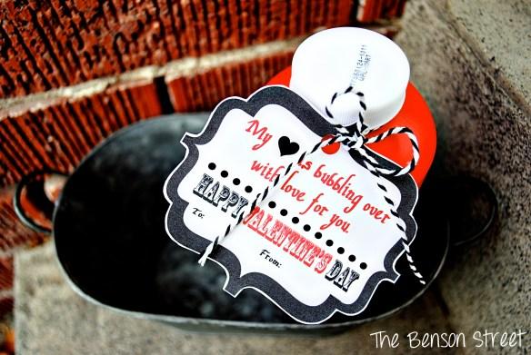 Bubbles Valentine Printable at The Benson Street4