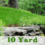 10 Tips to Prepare your Yard for Spring