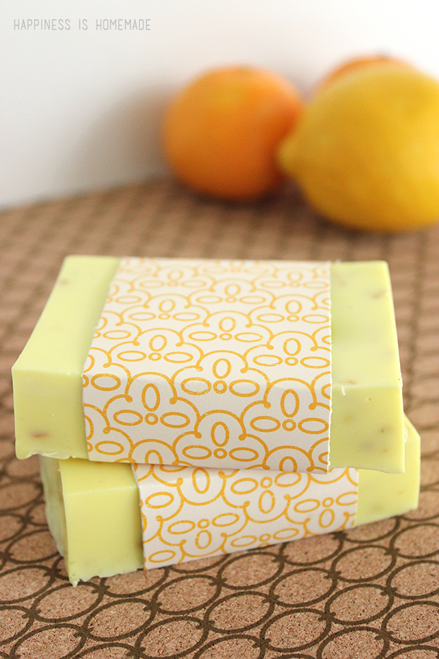 Make-Your-Own-Citrus-Antibacterial-Soap-with-ALL-Natural-Ingredients