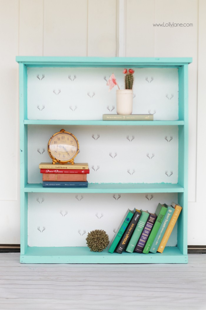 chalk-paint-bookcase-makeover-700x1050