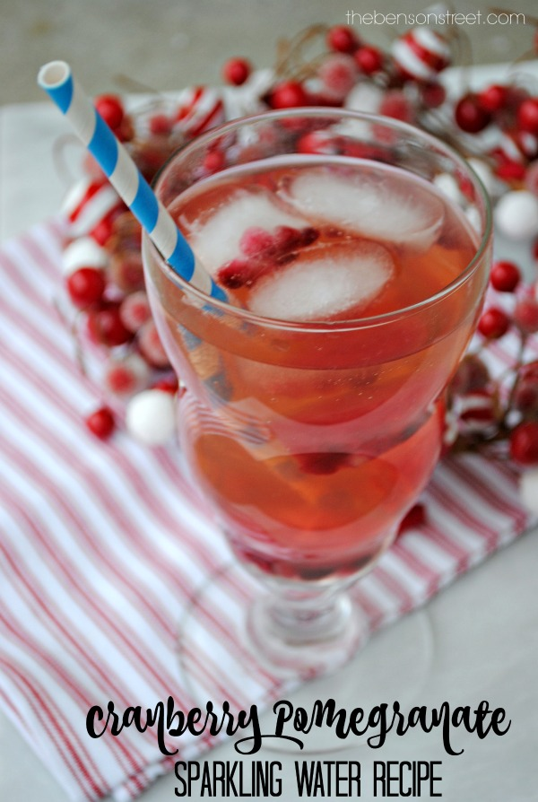 Cranberry Pomegranate Sparkling Water Recipe at thebensonstreet.com