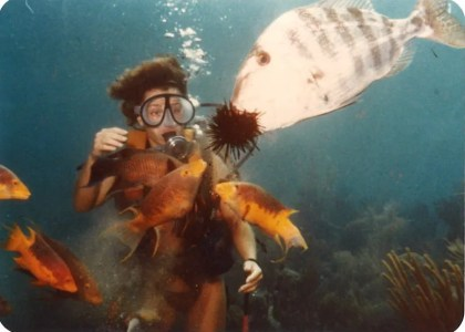 How To Become PADI Certified On Island