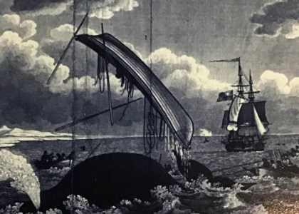 10 Facts About Bermuda in the 18th Century You Might Not Know