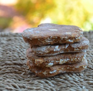 Stacked Pumpkin Oatmeal Dog Biscuits