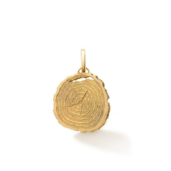 If_Trees_Could_Talk_pendant__yellow_gold_vermeil_600x