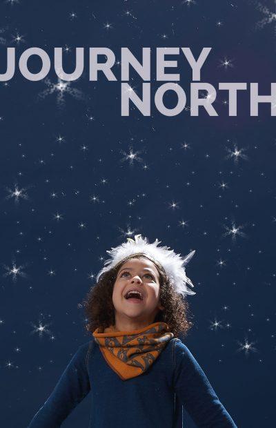 1-aw16_the-bonniemob_journey-north-night-sky