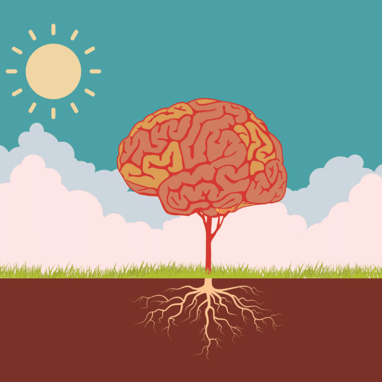 How the Brain's Power of Neuroplasticity Changes Over Your Lifetime