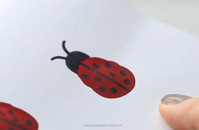 Make ladybug fingerprint card