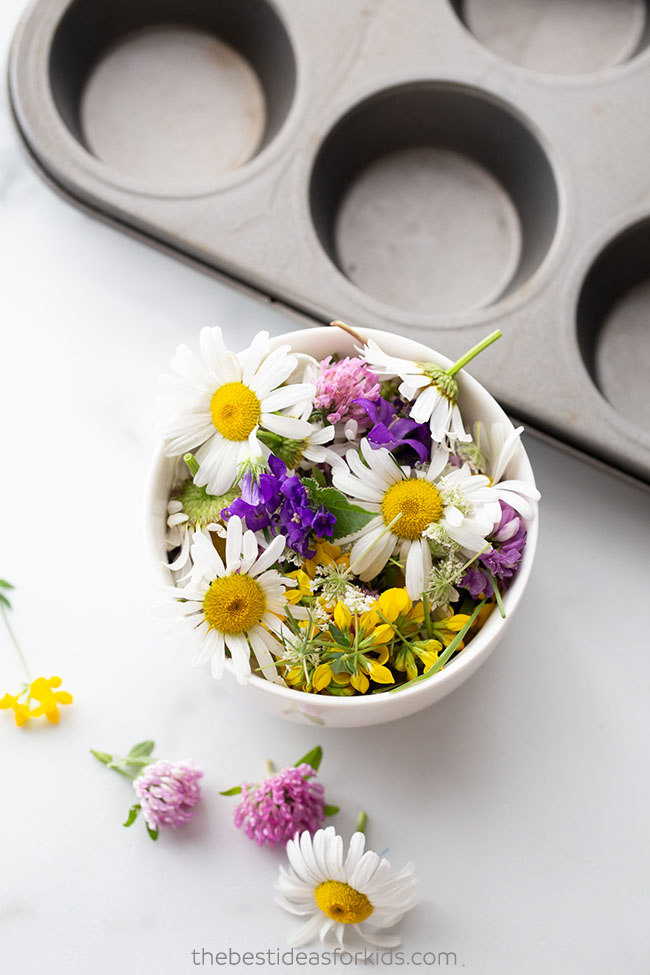 Collect Flowers for Activity