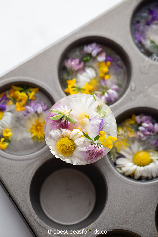 Frozen Flowers Sensory Play Activity