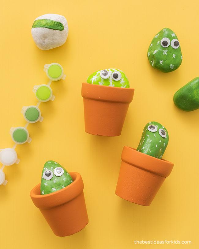 Cactus Rock Kit for Kids