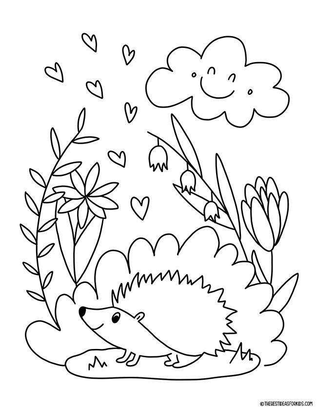 Spring Hedgehog Coloring Page
