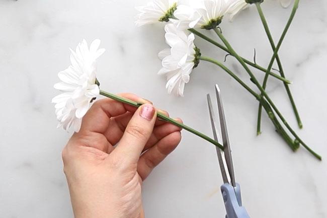 Trim Stem of Flower