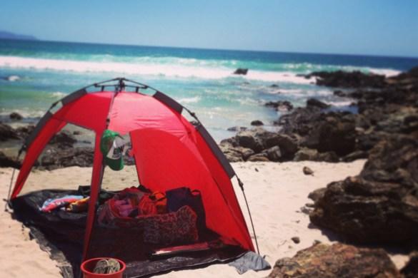 New_Zealand_Summer