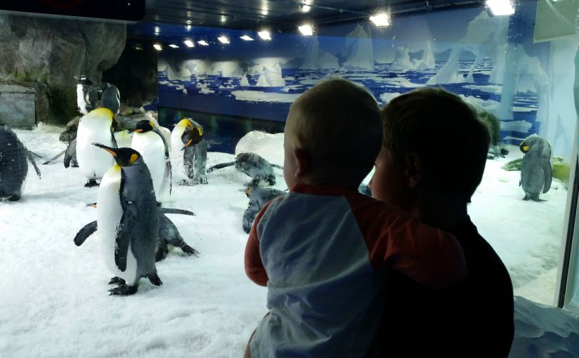 Grown Ups Go Free | Our Top 5 School Holiday Activities