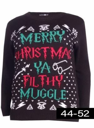 kerst trui Harry Potter