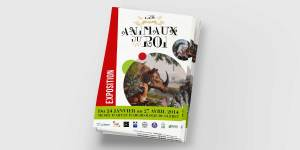 agence-communication-limoges-tbo-flyer-musee-gueret