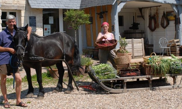 Interview with Charles + Perrine of Bec Hellouin Permaculture Farm