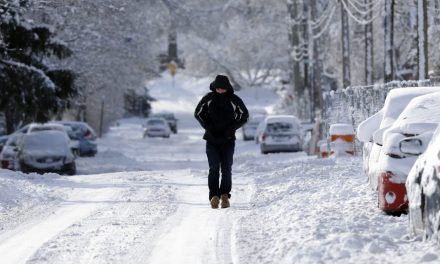 The polar vortex, climate change and the 'Beast from the East'