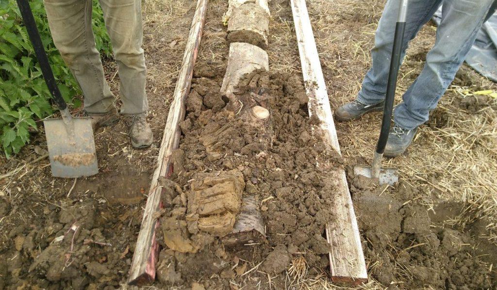 Our first Hügelkultur raised bed