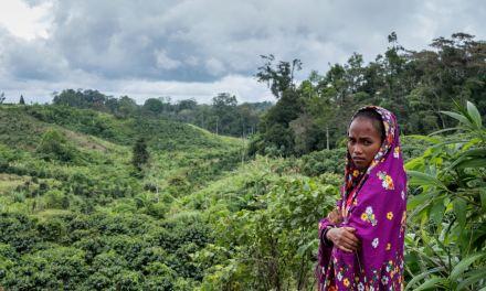 La défense des droits fonciers et environnementaux est de plus en plus meurtrière