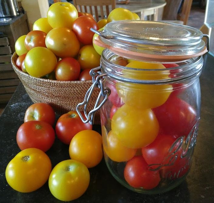 Bottling tomatoes