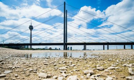 The great drought of 2018: Germany's endless summer